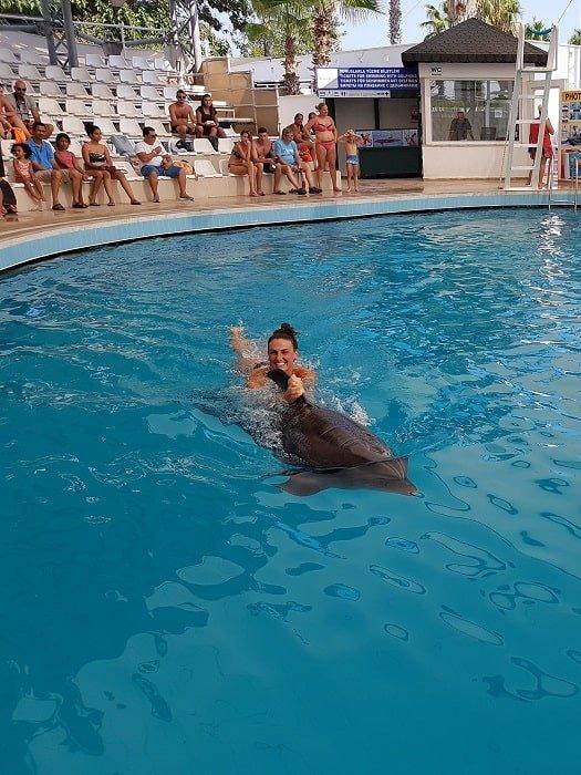 Плавание с дельфинами в Анталии