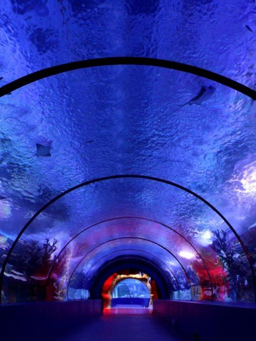 Океанариум Анталии из Сиде
