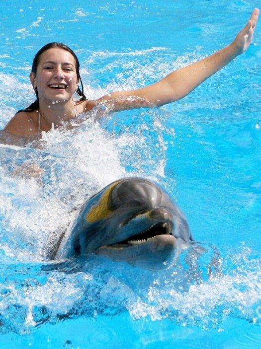 Плавание с дельфинами в Белеке